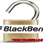Cara Mudah Unlock Blackberry